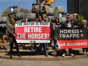 A NYCLASS protest against the horse carriage industry. (Photo: Spencer Platt/Getty Images)