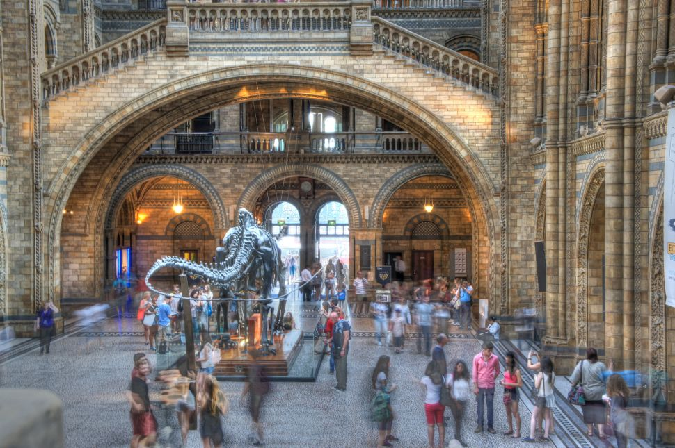On the Market: Museum of Natural History, Lena Dunham Expanding Real Estate Holdings