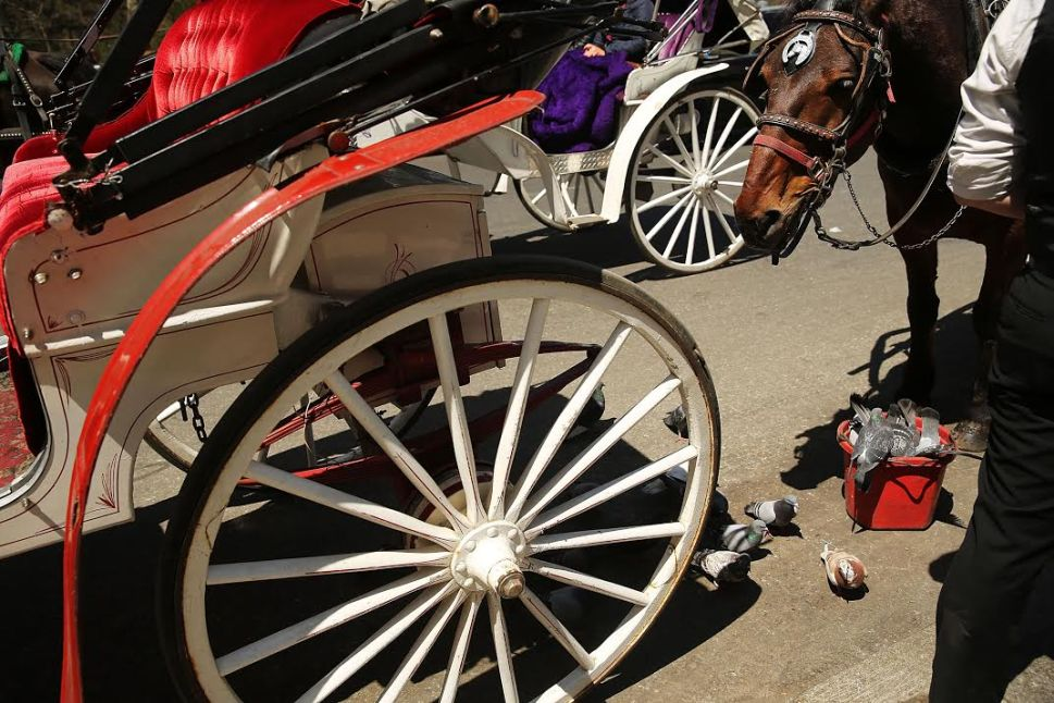 De Blasio's Central Park Car Ban Won't Apply to So-Called Horseless Carriages