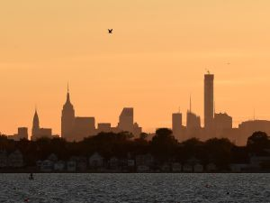 An gull flies over the midtown Manhattan skyline on a brisk autumn afternoon October 30, 2014 in New York. AFP PHOTO/Don Emmert (Photo credit should read DON EMMERT/AFP/Getty Images)