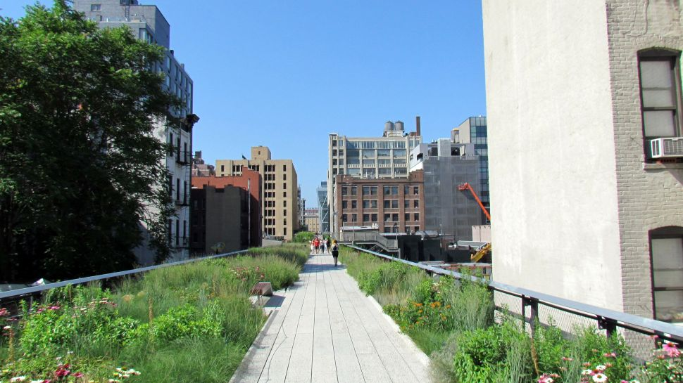 High Line to Host Year-long Art+Nature Exhibition, 'Panorama'