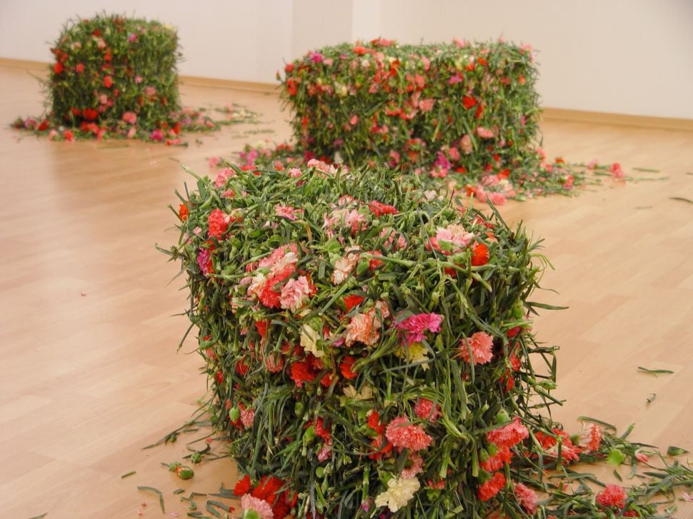 Potato Chips and Carnations Coming to Special Projects at the Armory Show