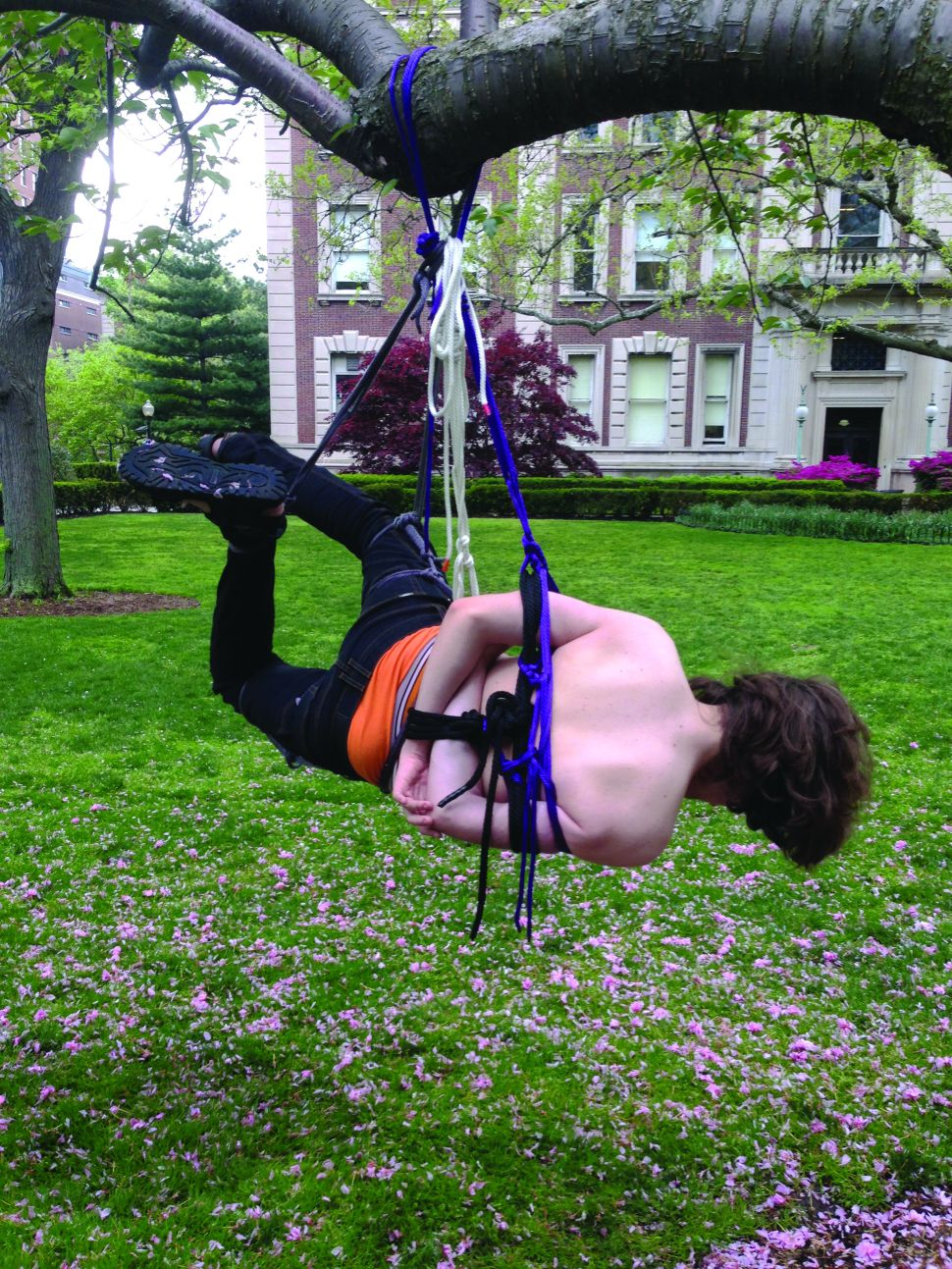 50 Shades of Ivy: Kink on Campus