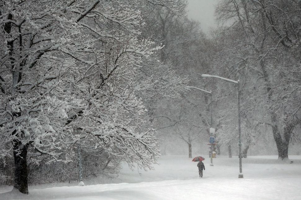Afternoon Bulletin: Craigslist Creeps Monopolize on Snowstorm, 'Cats' Returns