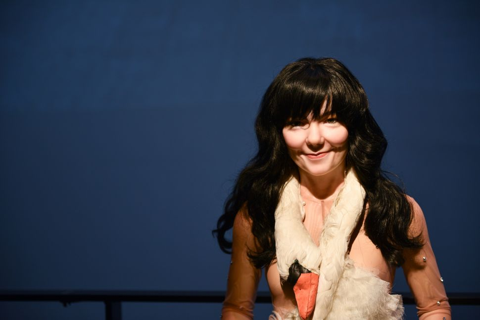 And the Museum of Modern Art Presents…Bjork? Why? Scenes From an Opening Reception