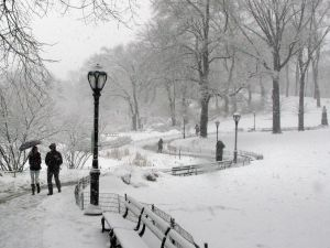 Central Park in early March. (Photo: Getty Images)