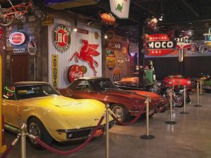 The Corvettes on view.