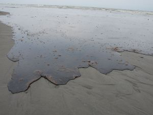 Thick oil washing ashore in Louisiana in 2010. (Photo: Wikipedia)