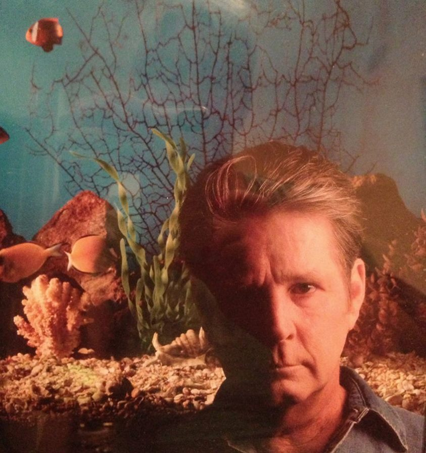 Brian Wilson's New Album Is Far From Essential Listening