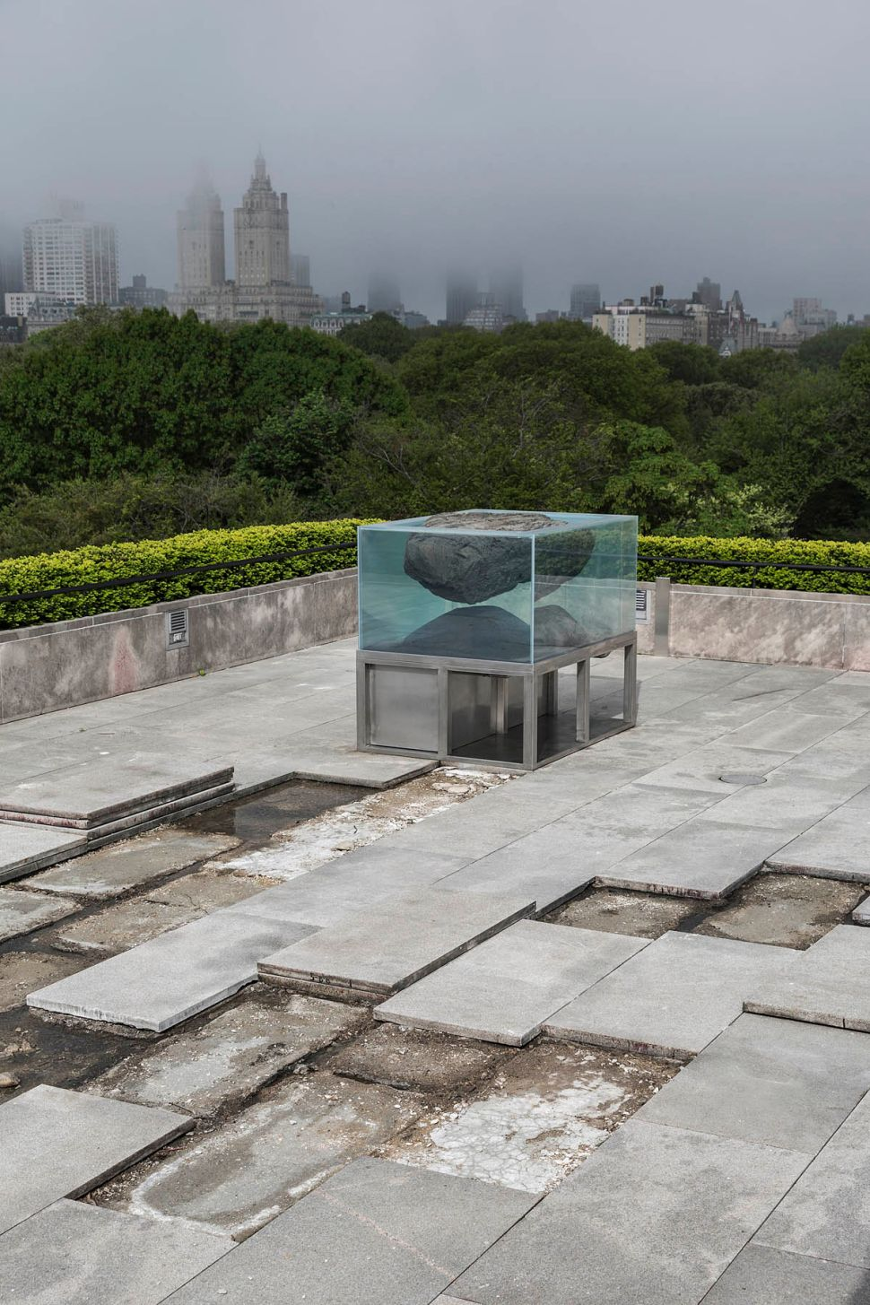 Pierre Huyghe on Why He Chose to Dig Up the Met's Roof Garden