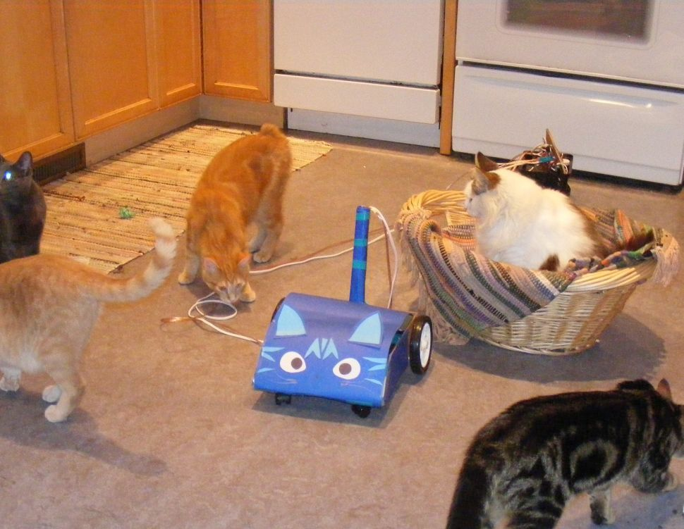 This Mobile App Could Power Your Handmade Cat-Chasing Robot