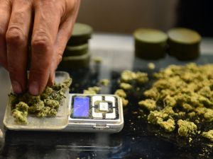Brooklyn may be opening New York's first dispensary as early as January. (Frederic J. Brown/AFP/Getty Images)