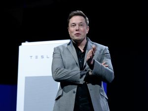 Will Elon Musk's plan work, or should he focus on his other business ventures?