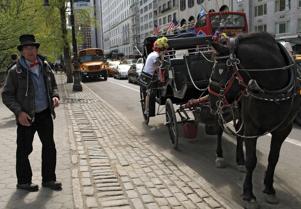 De Blasio Horse-Carriage Deal Falls Apart as Teamsters Drop Support