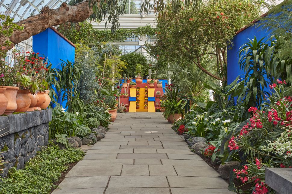Frida Kahlo's Lush NY Botanical Garden Blockbuster to Add Light Art by Jenny Holzer