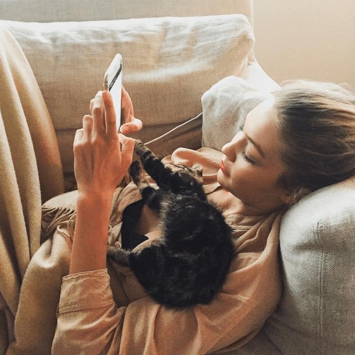 Gigi Hadid's New Kitten Is an Instagram Sensation