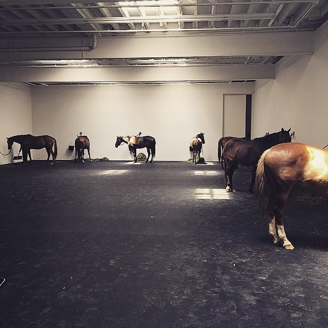 Gavin Brown's Enterprise Bids Farewell to Village With Live Horse Installation