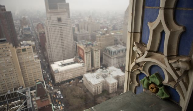 The view from the 40th floor. (Arman Dzidzovic/New York Observer.)