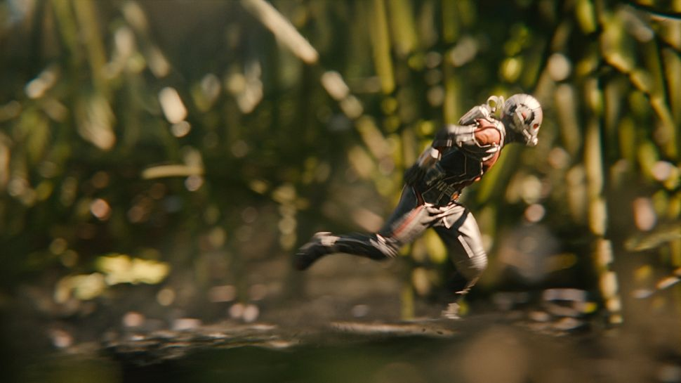 'Ant-Man' Invasion: Break Out the Bug Spray!