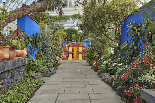Fridas and Diegos: A Look-Alike Contest at the New York Botanical Garden
