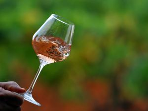 Are you drinking your rose properly? (Photo: GERARD JULIEN/AFP/GettyImages)