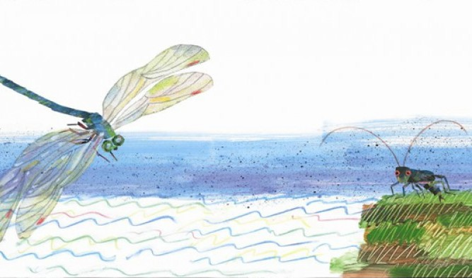 Road Trip-Worthy: The Eric Carle Museum of Picture Book Art
