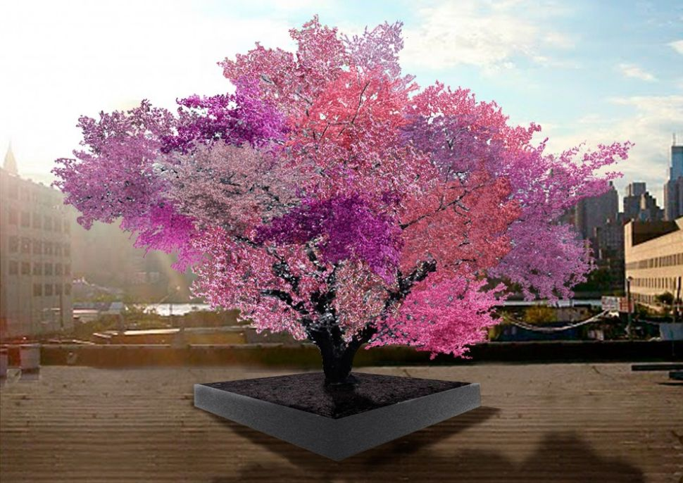 Artist Made a Frankentree That Bears 40 Different Fruits