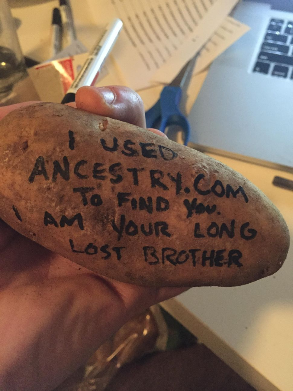 PotatoParcel, an Excess Mail Pioneer, is For Sale