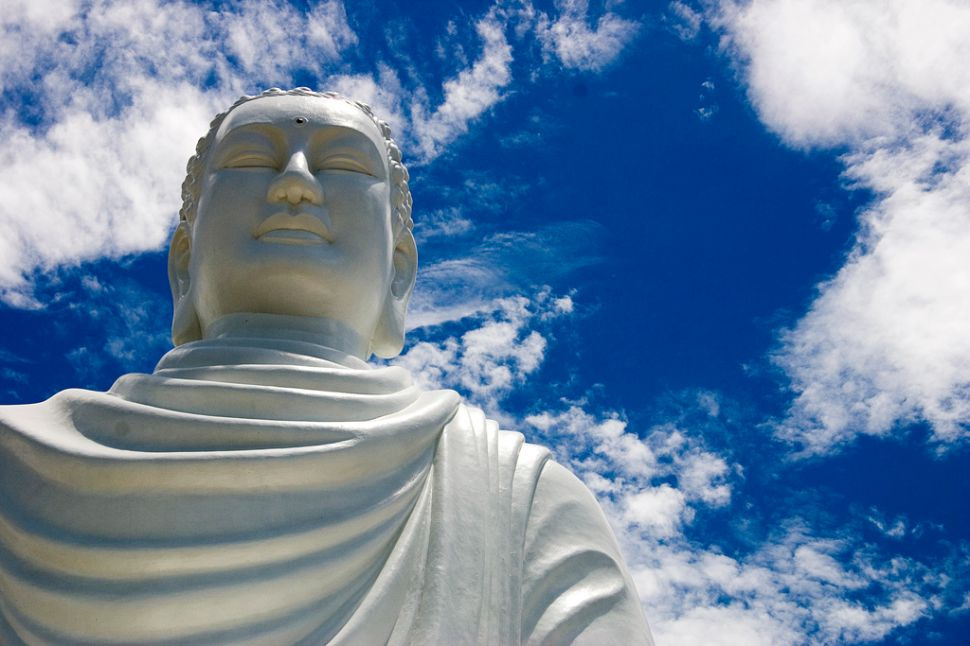 The Buddha-Elon Musk Paradox
