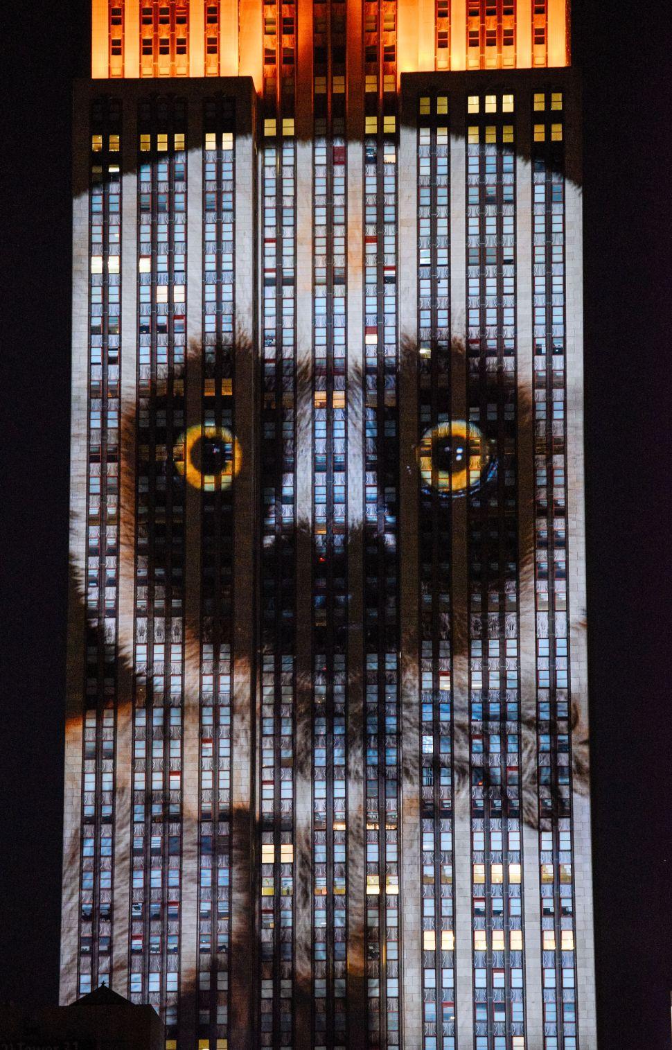 Animal Empire: Wildlife Roam Up Manhattan's Most Famous Building