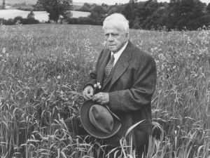 Robert Frost in a meadow, far from any roads. (Photo: Getty Images)