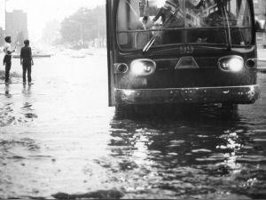 New York after the rain, 1967, John Atherton/flickr.