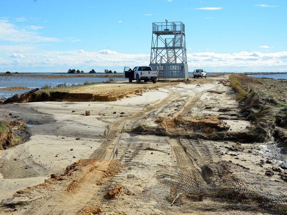 Committees to Investigate Dumping at Wildlife Refuge, Animal Trafficking