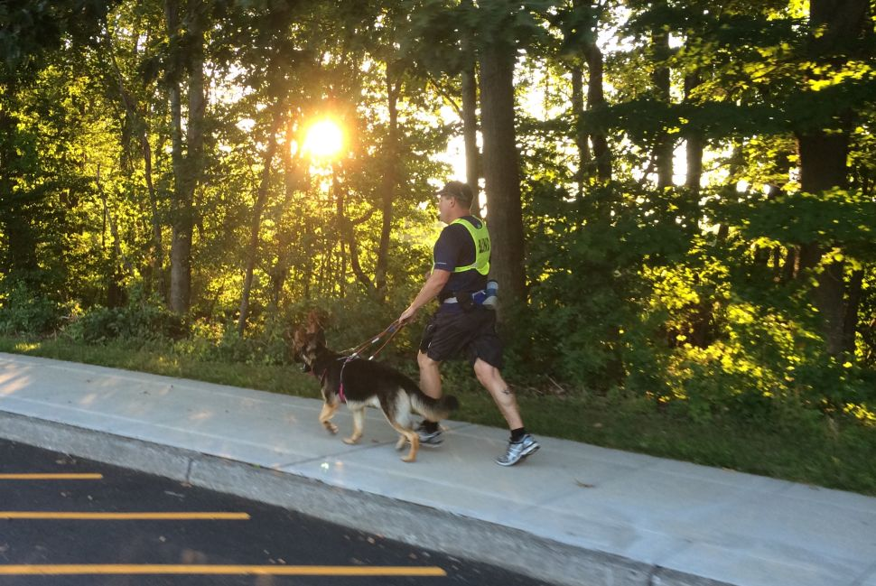 Blind Marathoner and His Guide Dog Are History-Making Running Buddies