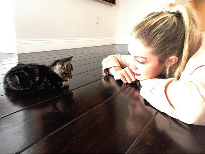 Who's More Photogenic: Models or Their Adorable Pets?