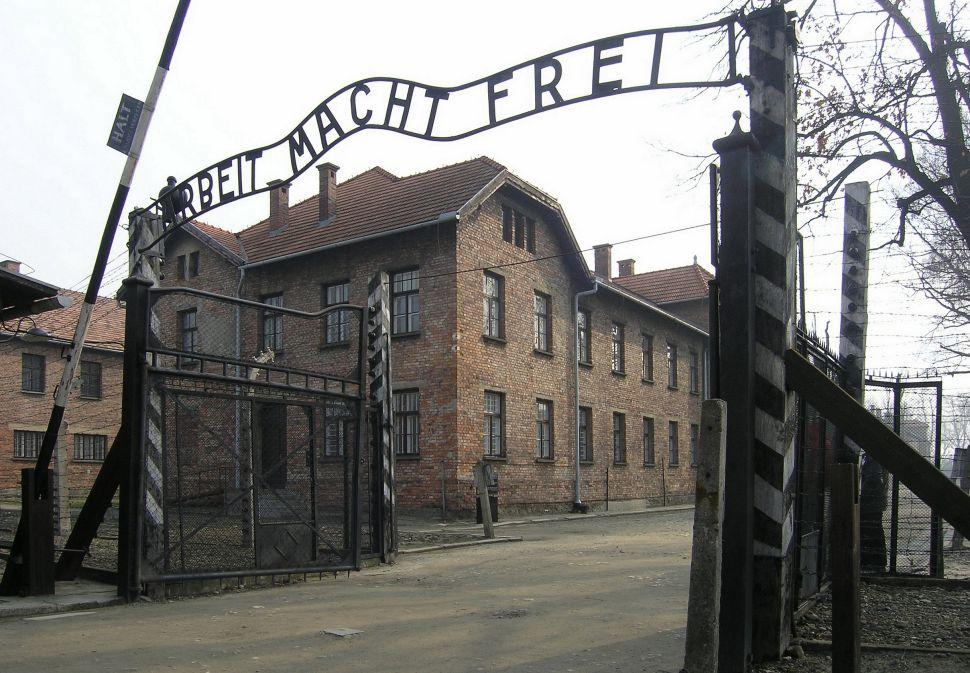 Auschwitz Museum Installs Showers in Offensive Attempt to Cool Off Summer Visitors