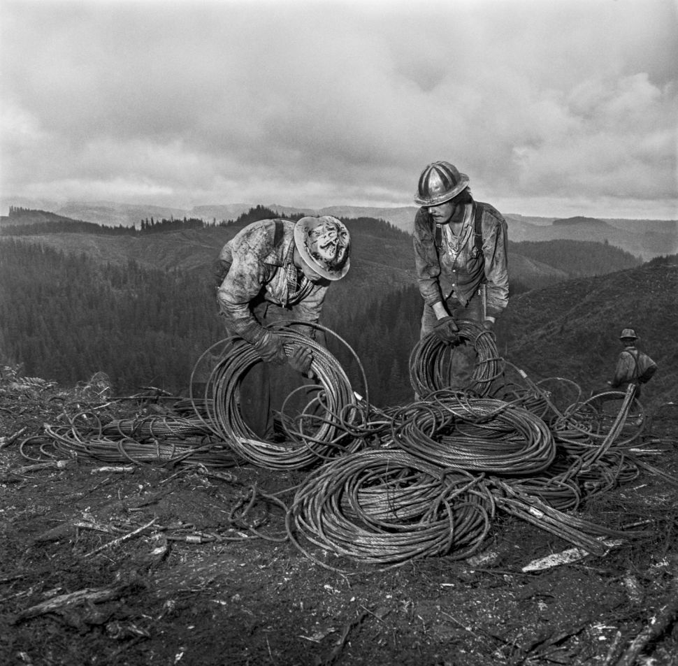 With These Amazing Shots of Lumberjacks, Photographer Larry Fink Goes Out on a Limb