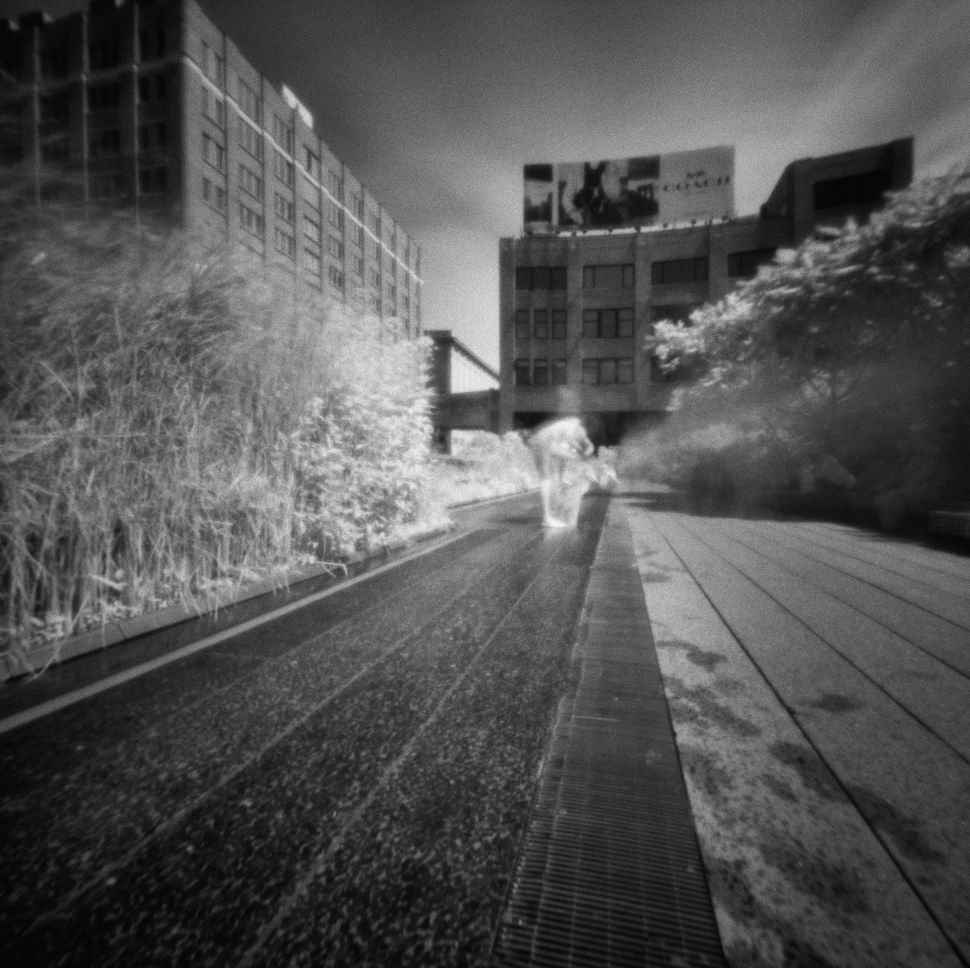 The High Line Like You've Never Seen It Before