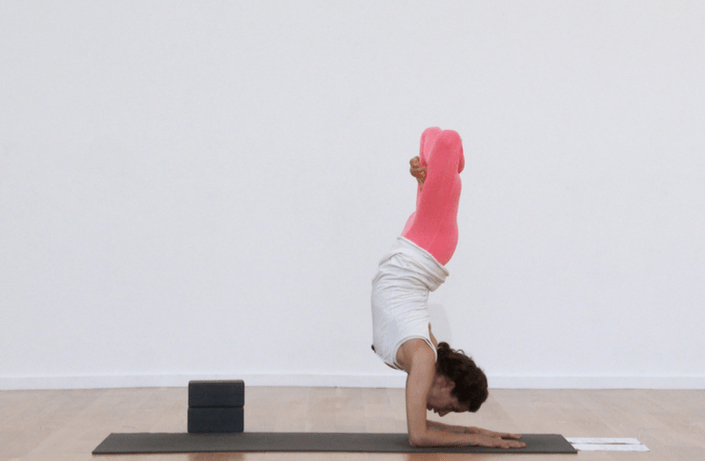Carry Your Favorite Yoga Instructors In Your Pocket