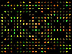 DNA microarray (Wikimedia Commons)