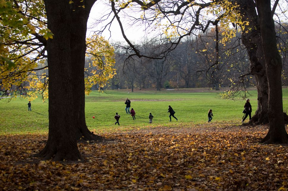 Afternoon Bulletin: Prospect Park Still Recovering from Sandy Three Years Later