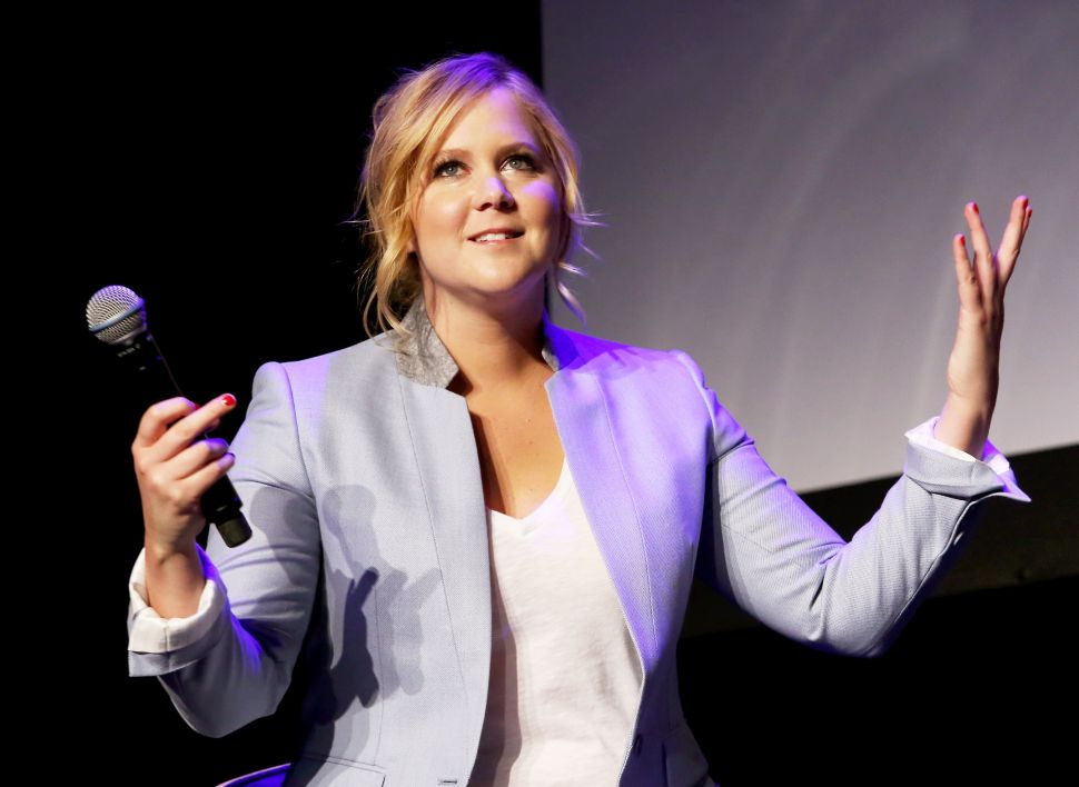 Amy Schumer's Writer Harasses Women Online—But She Blocks Fans Who Bring It Up