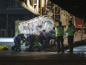 "(FILES) A file photo taken on December 30, 2014, shows medical personnel wheel a quarantine tent trolley containing Scottish healthcare worker Pauline Cafferkey, who was diagnosed with Ebola after returning to Scotland from Sierra Leone, into a Hercules Transport plane at Glasgow International Airport, bound for The Royal Free hospital in London. British nurse Pauline Cafferkey who was successfully treated in January 2015 after contracting Ebola in Sierra Leone is now ""critically ill"" due to a resurgence of the virus, the hospital treating her said on October 14, 2015. ""We are sad to announce that Pauline Cafferkey's condition has deteriorated and she is now critically ill. Pauline is being treated for Ebola in the high-level isolation unit at the Royal Free Hospital,"" it said in a statement. AFP PHOTO / STR (Photo credit should read -/AFP/Getty Images)"