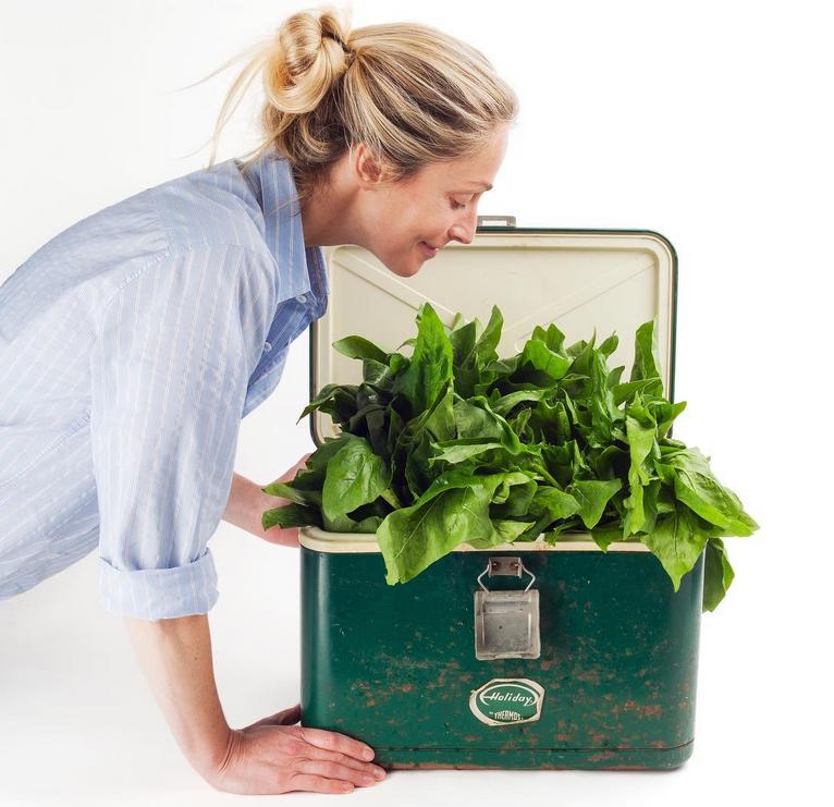 Need More Greens? Former Model Invents Dissolving Vegetable Tablet
