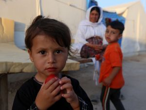 Displaced Iraqis from the Yazidi community, who fled violence between Islamic State (IS) group jihadists and Peshmerga fighters in the northern Iraqi town of Sinjar, are seen at a camp for internally displaced persons (IDP) in the Sharya area some 15 kilometres from the northern Iraqi city of Dohuk on May 20, 2015. AFP PHOTO / SAFIN HAMED (Photo credit should read SAFIN HAMED/AFP/Getty Images)