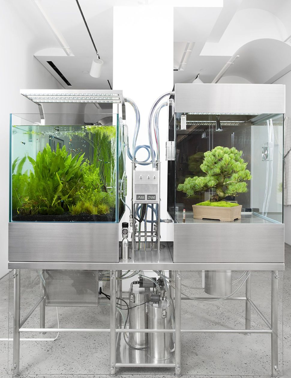 A Cult Artist/Designer Builds a Shiny Ecosystem in Chelsea