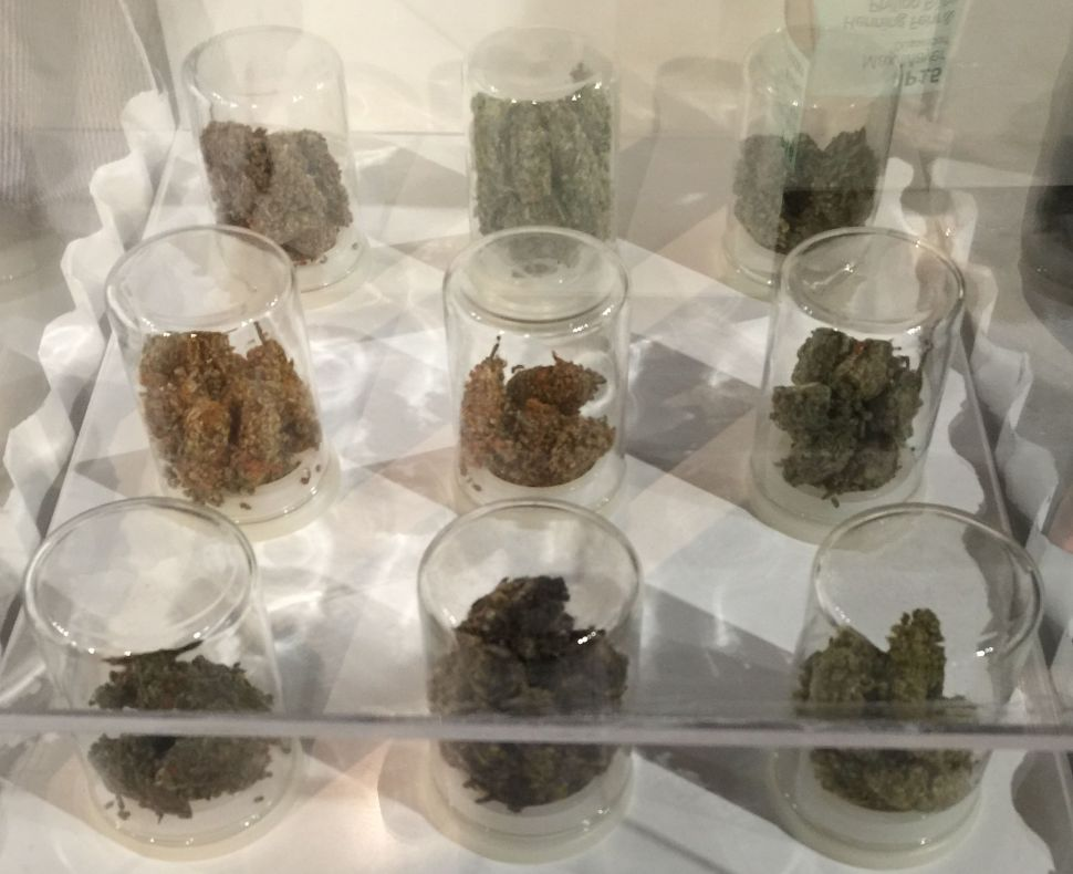 This Gallery is Showing Pot at Art Basel Miami Beach