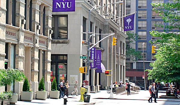 NYU Applicant Blasts Administrator on Twitter After Insulting Email