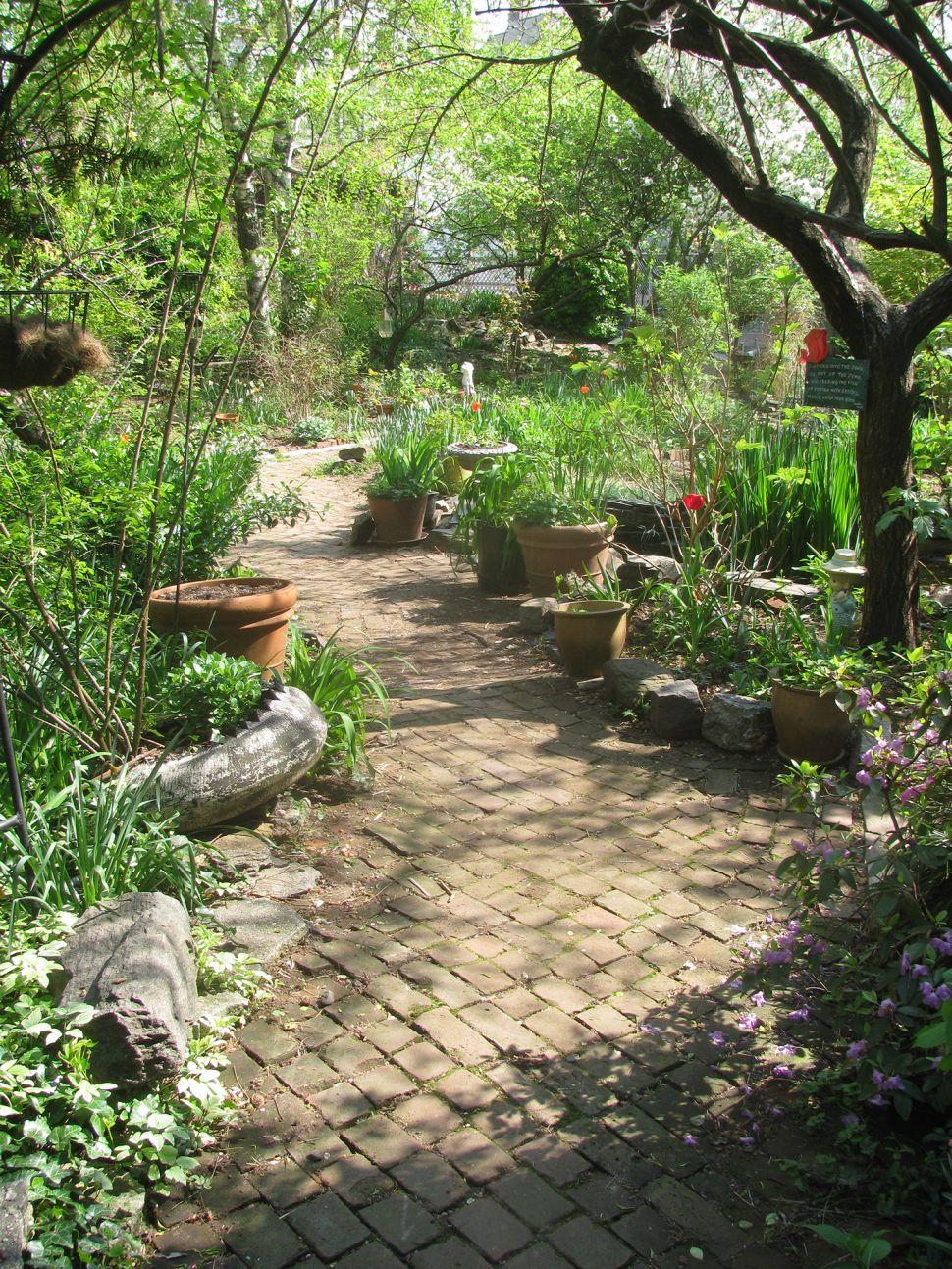 Invasive Species: Developers See Green in Community Gardens