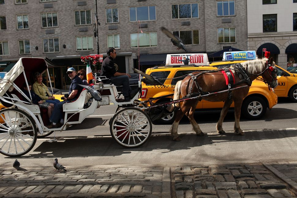 Councilman Calls for Delay in Horse Carriage Vote